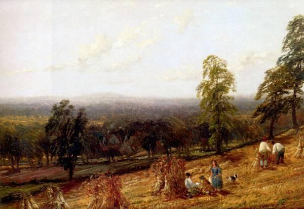Harvestime Ashborne Warwickshire